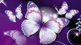 Mariposas de fantasía