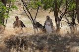 Mary-joseph-journey-to-bethlehem, woman, man, donkey, nature