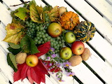 Fruits harvest autumn thanksgiving