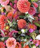 Autumn FLOWER PROFUSION