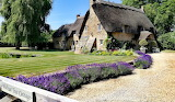 Walnut Tree Cottage Duxford, England