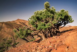 Landschaft in Marocco