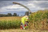 harvester corn