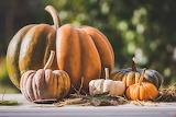 Pumpkin pixabay.com