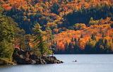 Parc provincial algonquin Canada