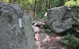 Its Getting Rocky on The Trail