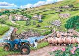 Sheep Farm~ Keith Stapleton ii Round Up
