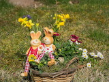 Easter 196