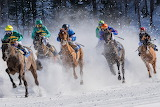 horse racing in the winter