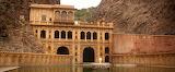 Templo de los monos (India)