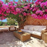 backyard-colorful-terrace-outdoor