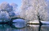 Beautiful Winter Scenery Wallpapers (9)