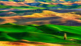 Colorful Rolling Hills In Palouse, Washington