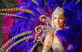 Girl, decoration, feathers, outfit, carnival, colourful