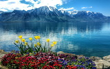 Spring across the lake