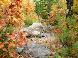 Kennebec Trail