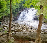 Laurel Fork Waterfall