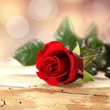 ☺♥ For you...☺☺☺