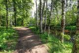 Nevsky Forest Park