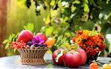 Leaves, flowers, table, basket, apples, fruit, still life, plum
