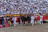 Vuelta al ruedo a un gran toro de El Capea en Pamplona