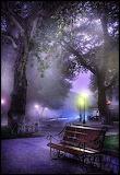 Paris in Fog