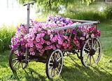 Cutest flower planter
