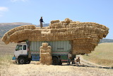Truck loaded with bales of straw-Morocco