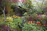 England Gardens Walsall Garden Shrubs 543145 1280x853