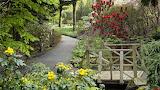 Minter-jardines-wallpaper