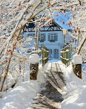 Various 810 winter house