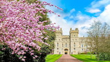#Windsor Castle in the Spring