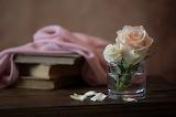 La rosa nel bicchiere
