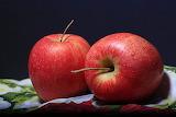 Apple-1506119 1920