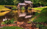 Virginia Grist Mill USA