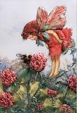 little red flower elve