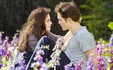 Romantic-couple-romance