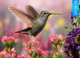 Hummingbird by auricle 99 from magic jigsaw puzzles