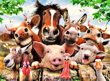 #Farm Friends Selfie by Howard Robinson