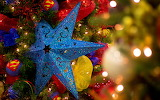 Blue star on christmas tree