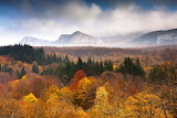 EvgeniDinevPhotography Mountains & Autumn Trees