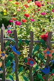 Flower Garden Decorated Fence Heritage Museums, Sandwich, MA. US