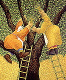 Sull'albero x