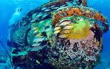 Aquarius Reef base in the Florida Keys National Marine Sanctuary