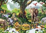 Idyllic Jungle