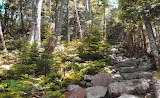 Galehead Trail
