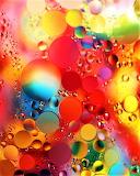 #Oil & Water 2