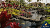 Resort on Kona, Hawaii by Debbie Burris from auricle99 on magic
