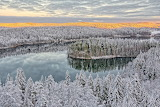 Lapland forest in winter