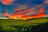 Summer solstice sunset near Palouse Idaho